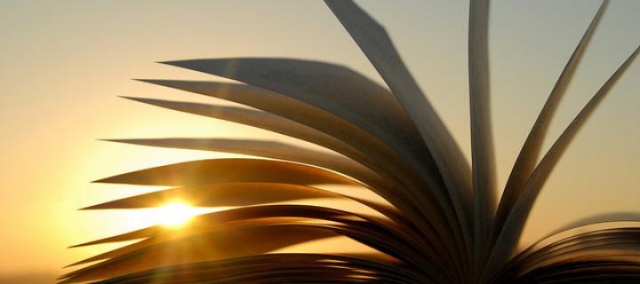 Qual è il senso della letteratura?